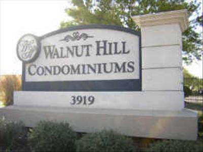 Walnut Hill  #1