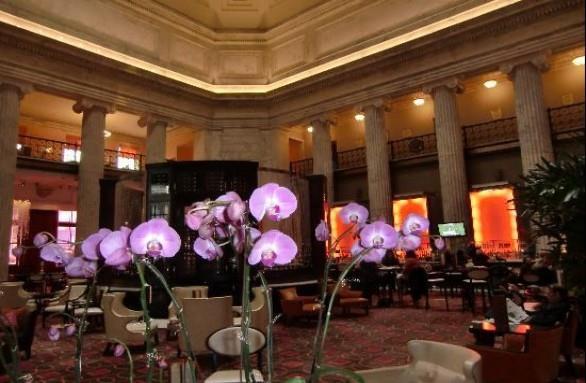 Residences at Ritz Carlton #9